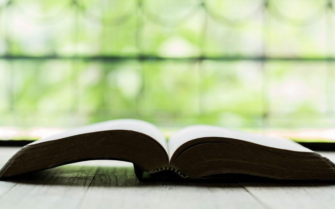 «CUÉNTALES A TUS HIJOS Y A TUS NIETOS» (Dt 4, 9)